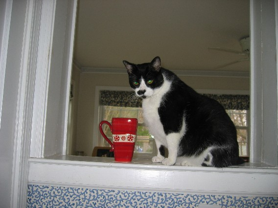 Fyourcoffee