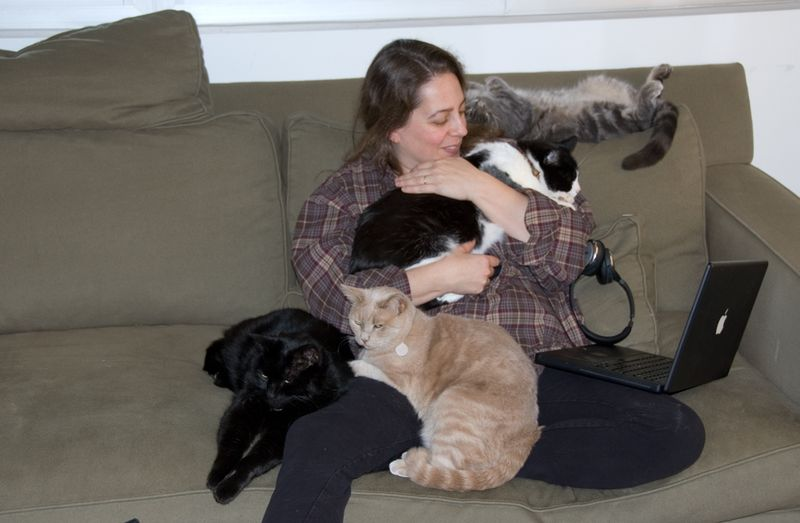 J-and-four-kitties-on-couch